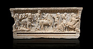 Roman relief sculpted sarcophagus of Achilles from Attica. This side shows scenes from the life of Achilles and bears characteristics of the Late Antonines Period of the Roman Imperial Period between 170-190 AD. Adana Archaeology Museum, TurkeyRoman relief sculpted sarcophagus of Achilles from Attica. This side shows two griffin and  bears characteristics of the Late Antonines Period of the Roman Imperial Period between 170-190 AD. Adana Archaeology Museum, Turkey. Against a black background .<br /> <br /> If you prefer to buy from our ALAMY STOCK LIBRARY page at https://www.alamy.com/portfolio/paul-williams-funkystock/greco-roman-sculptures.html . Type -    Adana     - into LOWER SEARCH WITHIN GALLERY box - Refine search by adding a subject, place, background colour, museum etc.<br /> <br /> Visit our ROMAN WORLD PHOTO COLLECTIONS for more photos to download or buy as wall art prints https://funkystock.photoshelter.com/gallery-collection/The-Romans-Art-Artefacts-Antiquities-Historic-Sites-Pictures-Images/C0000r2uLJJo9_s0