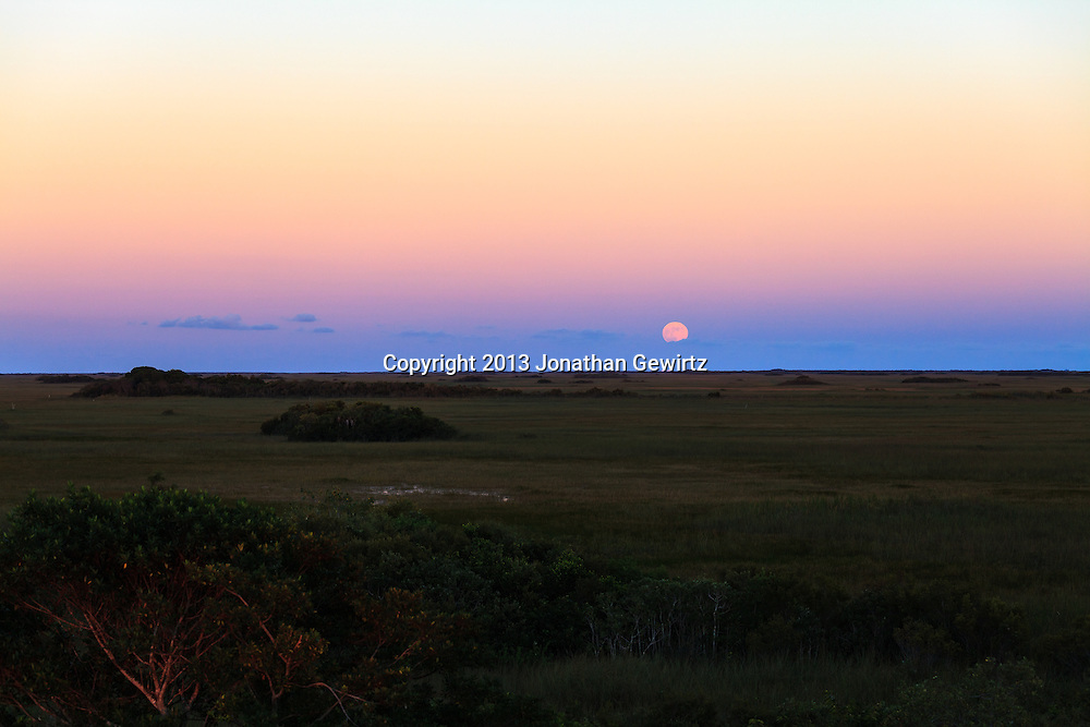 The full moon rises over sawgrass prairie in the Shark Valley section of Everglades National Park, Florida on October 18, 2013. WATERMARKS WILL NOT APPEAR ON PRINTS OR LICENSED IMAGES.