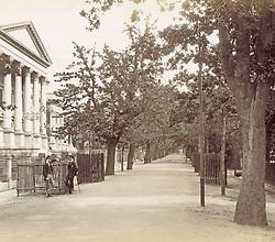 July 6, 2019 - Government Avenue, Cape Town, South Africa, GWW, c. 1890 - c. 1896. (Credit Image: © Album via ZUMA Press)