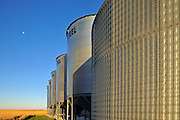 Grain bins. <br /> near Swift Current<br /> Saskatchewan<br /> Canada