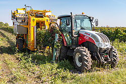 THEMENBILD - Traubenvollernter im Einsatz bei der Weinlese in Illmitz am Montag 14. September 2020 // Grape harvesters in action during the grape harvest in Donnerskirchen on Monday 14 September 2020. EXPA Pictures © 2020, PhotoCredit: EXPA/ Johann Groder