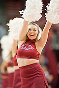 Nov 15, 2013; Fayetteville, Ar, USA; An Arkansas Razorback cheerleader performs during the first half of a game against the Louisiana-Lafayette Ragin' Cajuns at Bud Walton Arena Arena. Arkansas defeated Louisiana-Lafayette 76-63.  Mandatory Credit: Beth Hall-USA TODAY Sports
