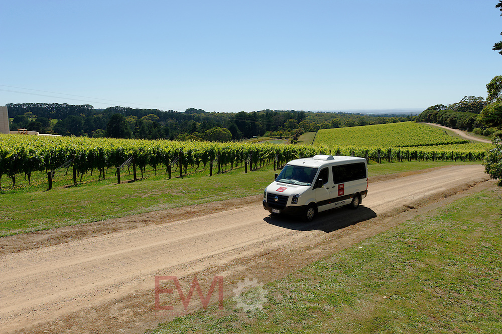 Red Hill shuttle in vineyard.<br /> <br /> Larger JPEG + TIFF images available by contacting use through our contact page at : www.effectiveworkingimage.com