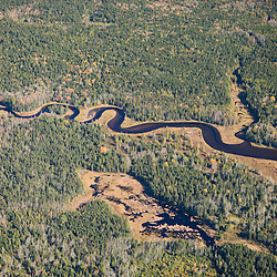 A tidal creek flowing through the Bass Harbor Marsh Maine USA