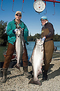 USA. Alaska. Kenai Peninsula. Kenai Alaska, Kenai River.  King Salmon fishers holding fresh caught large Kings.  Colorful models, beautiful sunshine on the Kenai River. PLEASE CONTACT US FOR DIGITAL DOWNLOAD AND PRICING.
