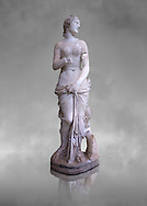 The Roman Venus Statue, the Goddess of Love, follows the style of a modest Aphrodite, known by other Roman replicas are copies of Ttththird century BC Hellenistic Greek statues now lost. Dated circa 1st quarter of second century AD, the Venus statue was excavated from the Odeon of Carthage. The National Bardo Museum, Tunis. Against a grey art background. .<br /> <br /> If you prefer to buy from our ALAMY STOCK LIBRARY page at https://www.alamy.com/portfolio/paul-williams-funkystock/greco-roman-sculptures.html . Type -    BARDO    - into LOWER SEARCH WITHIN GALLERY box - Refine search by adding a subject, place, background colour, museum etc.<br /> <br /> Visit our CLASSICAL WORLD HISTORIC SITES PHOTO COLLECTIONS for more photos to download or buy as wall art prints https://funkystock.photoshelter.com/gallery-collection/The-Romans-Art-Artefacts-Antiquities-Historic-Sites-Pictures-Images/C0000r2uLJJo9_s0c