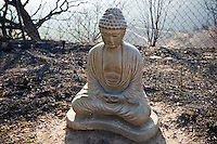 Holly Rd, Santa Barbara, California. Statue outside remains of house destroyed by Jesusita fire. May 2009
