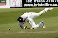Ian Cockbain dives the stop the ball during the LV County Championship Div 2 match between Gloucestershire County Cricket Club and Lancashire County Cricket Club at the Bristol County Ground, Bristol, United Kingdom on 7 June 2015. Photo by Alan Franklin.