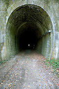 perspective view towards the end of an old train tunnel