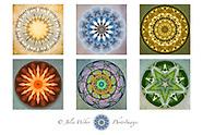 Mandala Showcases