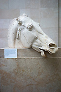Greece. Athens. Parthenon. Head of horse from the chariot of the moon-goddes Selene. East pediment. 5th C. BC. British Museum. London. United Kingdom