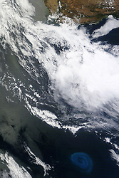 """The ocean has storms and weather that rival the size and scale of tropical cyclones. But rather than destruction, these storms - better known as eddies - are more likely to bring life to the sea...and often in places that are otherwise barren.<br /> The<br /> Moderate Resolution Imaging Spectroradiometer (MODIS) on NASA's Terra satellite captured these natural-color images of a deep-ocean eddy on December 26, 2011. The top close-up shows the vortex structure of the eddy, traced in light blue by plankton blooming in the 150-kilometer wide swirl. The lower, wider view shows the bloom and eddy in context, about 800 kilometers south of South Africa.<br /> """"Eddies are the internal weather of the sea,"""" says Dennis McGillicuddy, an oceanographer at the Woods Hole Oceanographic Institution. They are huge masses of water spinning in a whirlpool pattern - either clockwise or counterclockwise - and they can stretch for hundreds of kilometers. Eddies often spin off from major ocean current systems and can last for months.<br /> In the image above, the anti-cyclonic (counter-clockwise) eddy likely peeled off from the Agulhas Current, which flows along the southeastern coast of Africa and around the tip of South Africa. Agulhas eddies, or """"current rings,"""" tend to be among the largest in the world, transporting warm, salty water from the Indian Ocean to the South Atlantic.<br /> Certain types of eddies can promote blooms of phytoplankton. As these water masses stir the ocean, they draw nutrients up from the deep, fertilizing the surface waters to create blooms of microscopic, plant-like organisms in the open ocean, which is relatively barren compared to coastal waters.<br /> In satellite observations of sea surface height and in computer models, eddies appear as bumps or depressions in the ocean, indicating the upwelling or downwelling of water. They also can be distinguished by higher or lower surface temperatures. However, such observations were not available for the eddy depict"""