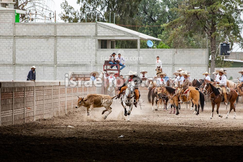 16 de septiembre de 2020. Zumpango, Estado de México. Charros durante una competencia en el Lienzo Charro Campesino Don Ángel Ortiz Tellez. En la foto, competencia de colas.