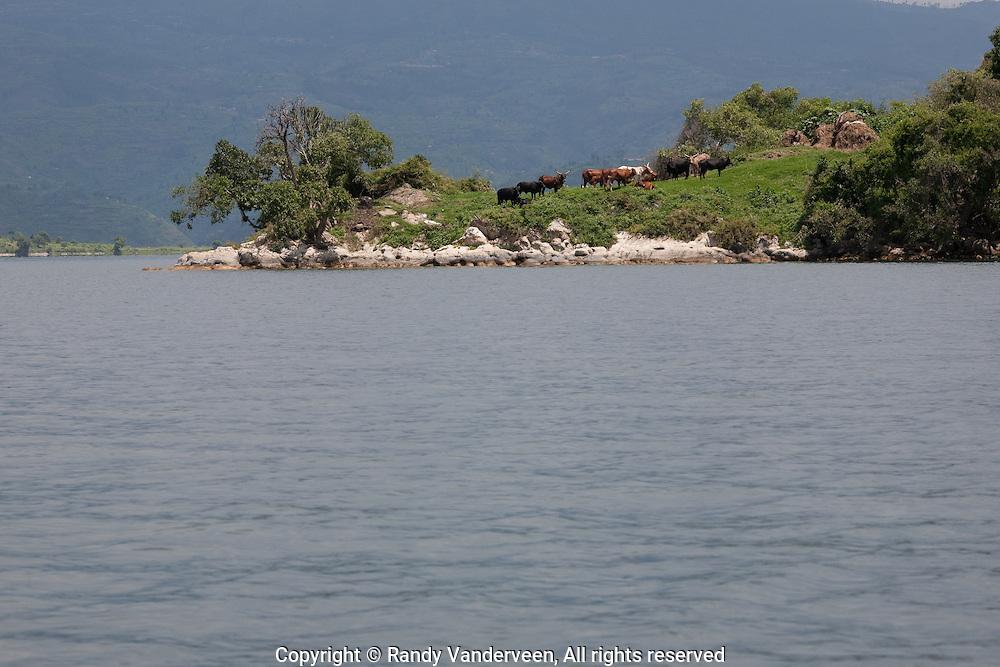 kibuye and nyrasunge Rwanda.