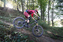 Mountain biker riding downhill through forest track, Bavaria, Germany