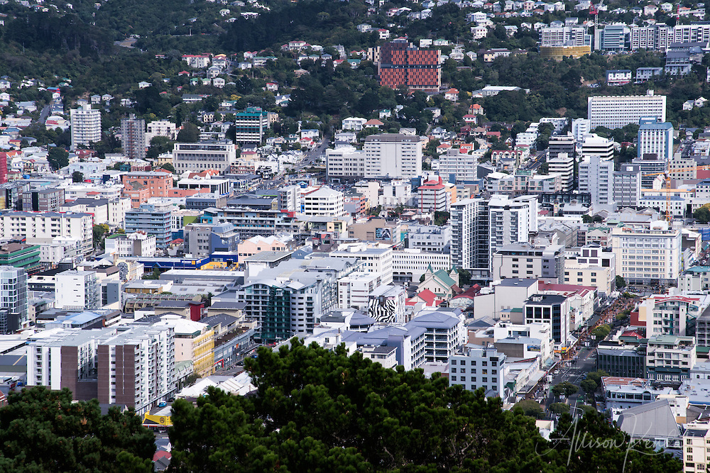 View the Te Aro district in of New Zealand's capital city Wellington from Mt Victoria lookout