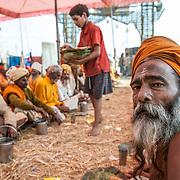 Allahabad 2007 01 30 Kumbh Mela <br /> Pilgrimer som serveras mat i jätte stora tält<br /> <br /> ----<br /> FOTO : JOACHIM NYWALL KOD 0708840825_1<br /> COPYRIGHT JOACHIM NYWALL<br /> <br /> ***BETALBILD***<br /> Redovisas till <br /> NYWALL MEDIA AB<br /> Strandgatan 30<br /> 461 31 Trollhättan<br /> Prislista enl BLF , om inget annat avtalas.