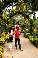 Singaporean Family at Botanic Gardens - The first Botanical and Experimental Garden in Singapore was established in 1822 by Sir Stamford Raffles, the founder of modern Singapore and a keen naturalist. The Garden's main task was to evaluate for cultivation, crops which were of potential economic importance, including those yielding fruits, vegetables, spices and other raw materials.  The present Singapore Botanic Gardens began in 1859, when the Agri Horticultural Society was granted land in Tanglin by the colonial government.