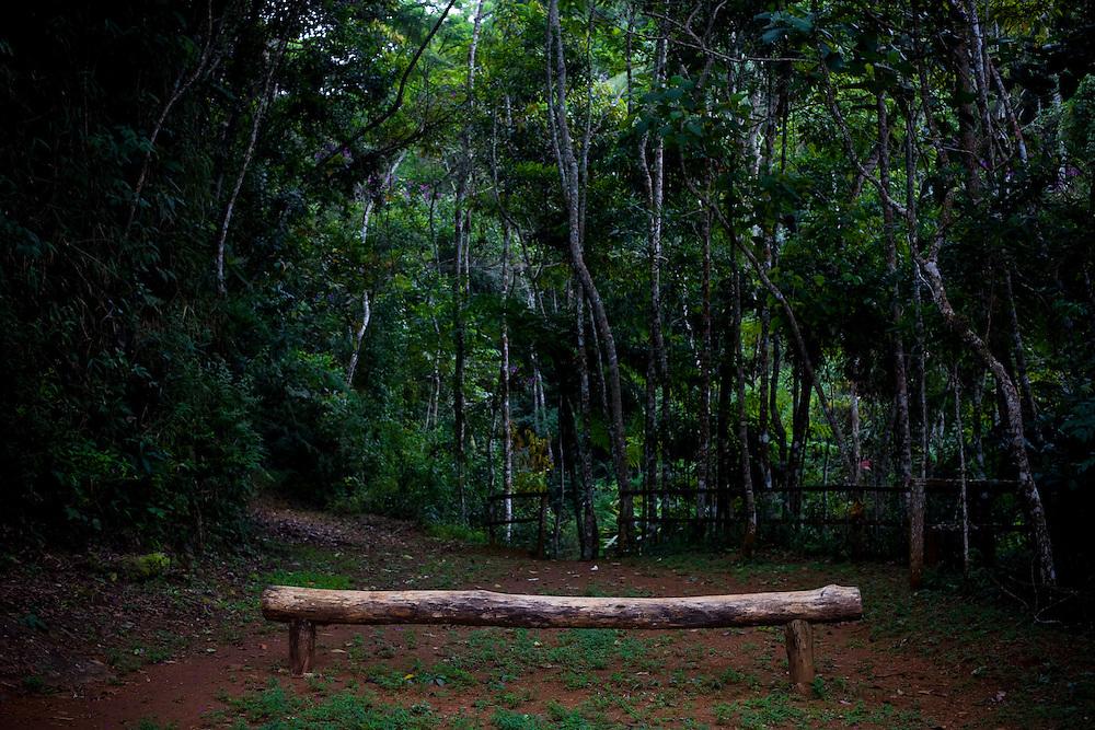 Manhumirim_MG, Brasil...Assento de madeira no Parque do Sagui em Manhumirim...The wood seat trail in the Sagui Park in Manhumirim...Foto: BRUNO MAGALHAES / NITRO
