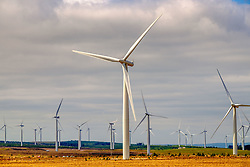 Wind Turbines near the village of Forth in South Lanarkshire, Scotland<br /> <br /> (c) Andrew Wilson   Edinburgh Elite media