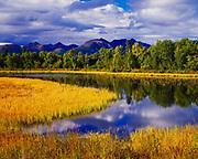 Pond on Osprey Island, Lake Clark near Port Alsworth, Lake Clark National Park and Preserve, Alaska.