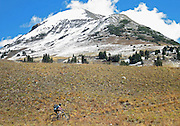 SHOT 9/28/12 12:59:59 PM - Mountain biking on the 401 Trail in Crested Butte, Co. with snow covered peaks in the background. Trail 401 has mind-boggling singletrack, spectacular views, and beautiful alpine wildflowers. This is easily one of the best rides in the Crested Butte area. (Photo by Marc Piscotty / © 2012)