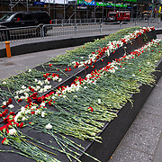 The Times Square Alliance set out 5000 roses in Times Square to help in healing in preparation for another expected night of protests due to the killing of George Floyd by a Minnesota Police Officer on Tuesday, June 2, 2020 in Manhattan, New York.  A citywide 8 p.m. curfew was ordered by NY Mayor Bill de Blasio amid the Floyd protests. (Alex Menendez via AP)