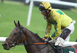 Festival D'ex ridden by Jamie Codd win The Goffs Land Rover Bumper during day one of the Punchestown Festival at Punchestown Racecourse, County Kildare, Ireland.