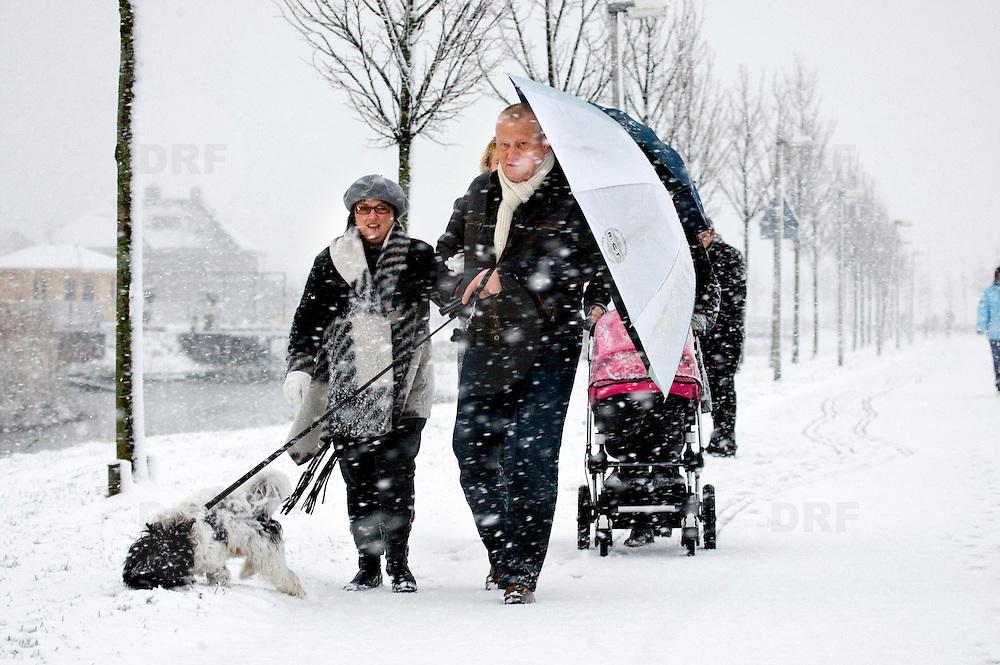 Nederland Barendrecht  23 november 2008 20081123 Foto: David Rozing .Mensen maken, schuilend onder parapluie, een winterse wandeling met de hond in de verse sneeuw op een van de eerste witte dagen van het jaar. ..Foto David Rozing/