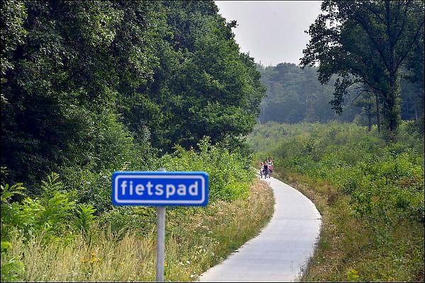 Nederland, Groesbeek,  15-8-2015 Het omstreden snelfietspad van Nijmegen via Molenhoek naar Groesbeek door het bos en langs het oude spoorlijntje van Nijmegen naar Kleef. WMG en RAVON verzetten zich al lang tegen het verharde fietspad door de spoorkuil. Een betonnen fietspad is slecht voor de overlevingskansen van gladde slang, zandhagedis en hazelworm, stelt de werkgroep. Een verhard fietspad op die locatie doorkruist het leefgebied van beschermde reptielen en zij worden mogelijk doodgereden door fietsers. Het fietspad is een gezamelijk project, een snelle fietsverbinding tussen Groesbeek via Kranenburg in Duitsland naar het treinstation van Kleef. FOTO: FLIP FRANSSEN/ HOLLANDSE HOOGTE