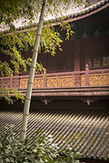 Bamboo and the architectural detail of the exterior of the Lingyin Buddhist temple, Hangzhou, Zhejiang Province, China