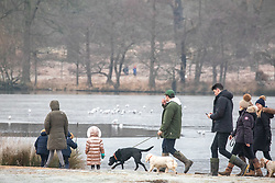 © Licensed to London News Pictures. 31/12/2020. London, UK. Members of the public enjoy a frosty walk in Richmond Park, South West London this morning on the last day of the year as the country sees freezing temperatures throughout the UK. The Met office has issued a yellow weather warning for snow in the South East today with the North taking the brunt of the heavy snow falls in the last few days. Yesterday, Downing Street ordered most of the UK into tier 4 restrictions as the coronavirus pandemic crisis continues into 2021. Photo credit: Alex Lentati/LNP