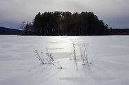 Mamakating, New York - Winter scences at the Bashakill Wildlife Management Area on Feb. 8, 2014.