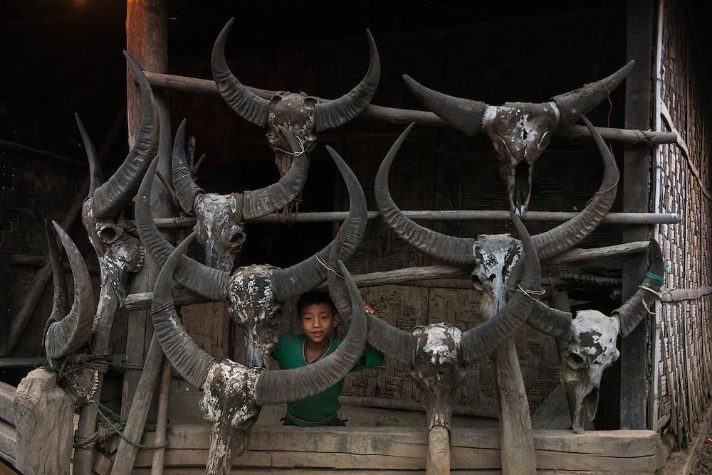 Buffalo skulls decorating house<br /> Chang Naga headhunting Tribe<br /> Tuensang district<br /> Nagaland,  ne India