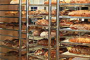Freshly baked breads on display at a bakery