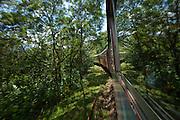 Serra Verde Express train through the Atlantic rainforest from Curitiba to Paranagua in Brazil