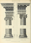 Ancient and Modern Ionic Order Copperplate engraving From the Encyclopaedia Londinensis or, Universal dictionary of arts, sciences, and literature; Volume II;  Edited by Wilkes, John. Published in London in 1810