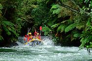 Oceania, New Zealand, North Island, Rotorua, Okere River, Tutea Falls