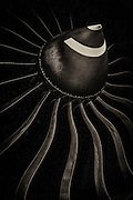 Spinner and blades of a Rolls Royce Trent 895-17 jet engine, which powers Delta's Boeing 777 airliners.  <br />