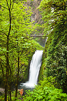 Multnomah Falls in the Columbia River Gorge, OR. Multnomah Falls is the tallest waterfall in the state of Oregon at 620 feet.