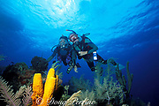 Edmund F. Ball at age 86, scuba diving on a coral reef<br /> Little Cayman Island ( Caribbean Sea )   <br /> MR 171