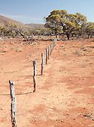 Fence boundary posts in the Gawler Ranges National Park, South Australia, Australia