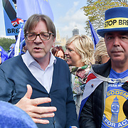 Guy Verhofstadt meet anti-Brexit at Westminster, London, UK