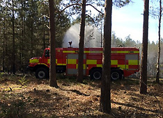 MP Forest goes up in Smoke