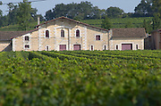 Vineyard. Winery building. Chateau Laroze, Saint Emilion, Bordeaux France