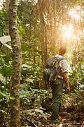 Man looking into the jungle, Odzala-Kokoua National Park.