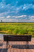 Pomost widokowy nad rzeką Biebrzą, Polska<br /> View over the river Biebrza, Poland
