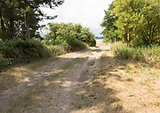Pathway track lane leading to River Deben tidal estuary, Sutton, Suffolk, England, UK