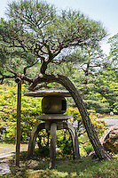 Stone Lantern at Sento Gosho Garden - located east of the Kyoto Imperial Palace, once also contained Sento Palace.  The garden is mosty all that has survived.  The garden's design has been attributed to Kobori Enshu, and consists of two ponds connected by a several bridges,  and surrounded by paths for strolling. The southern pond contains two islands connected to each other and to the shore.  Part of the sound pond shore consists of a pebble beach.  Each and every stone was carefully chosen for its size and shape.