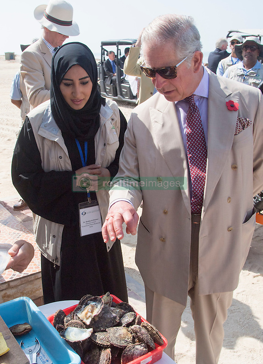 The Prince of Wales speaks with Dr Shaikha Al Dhaheri, Director of Marine Biodiversity, on a visit to Bu Tinah Island, a UNESCO protected marine area in the United Arab Emirates, during the royal tour of the Middle East.